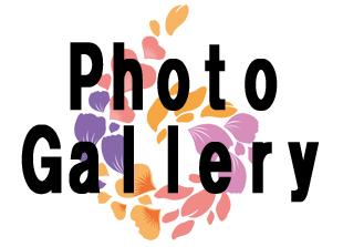 Photo Gallery 2017のイメージ